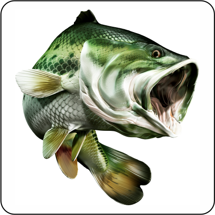 Large mouth bass digital fish art for Big mouth fish